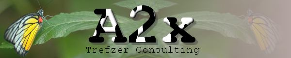 A2x Trefzer Consulting
